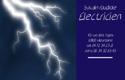 Cartes De Visite Electricien 407